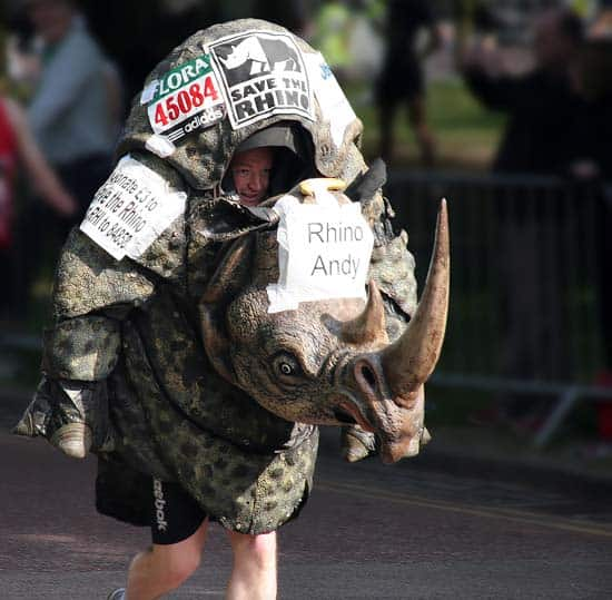 Save the rhino marathon costume